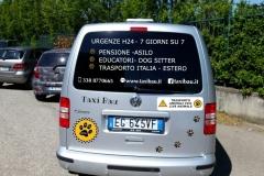 taxi-per-cani